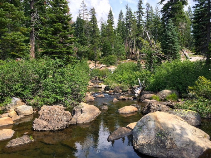 Silver Fork of American River
